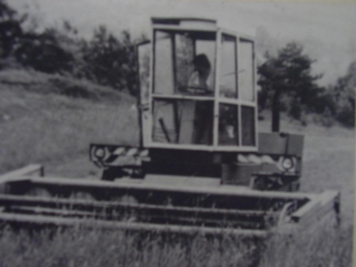 P1290026