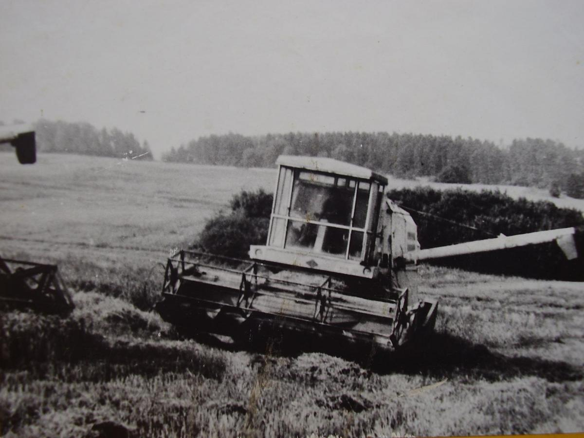 P1290030