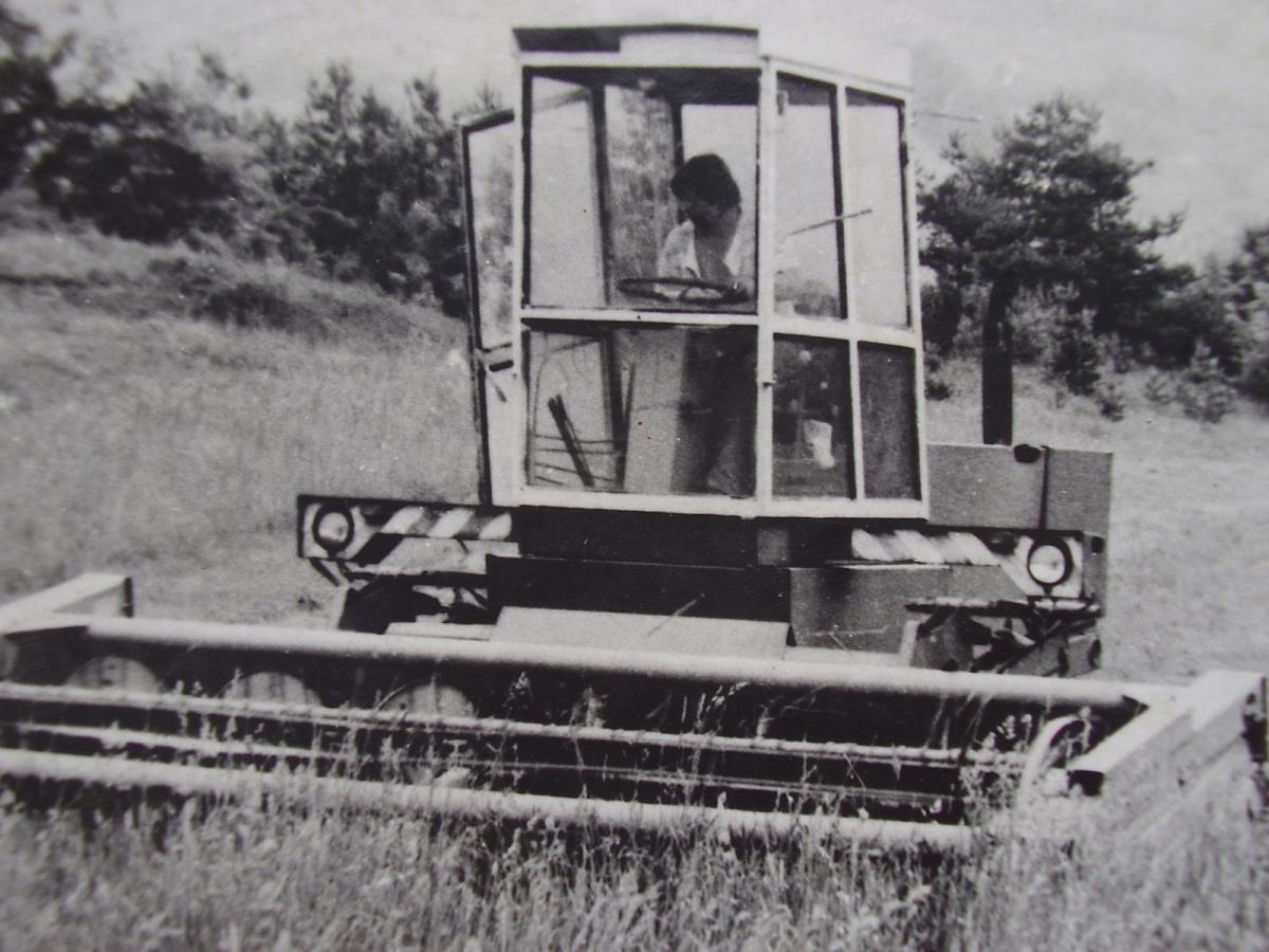 P1290036