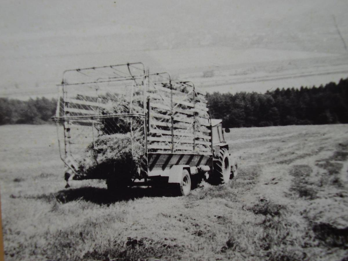 P1290043